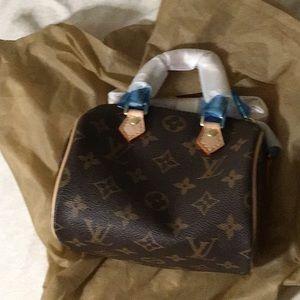 Mini speedy lv purse